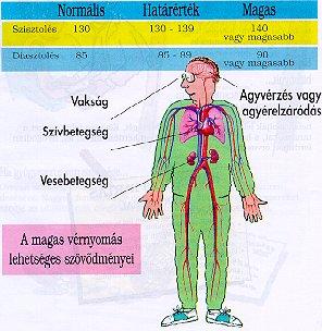 törzskönyvi hipertónia antibiotikumok magas vérnyomás ellen