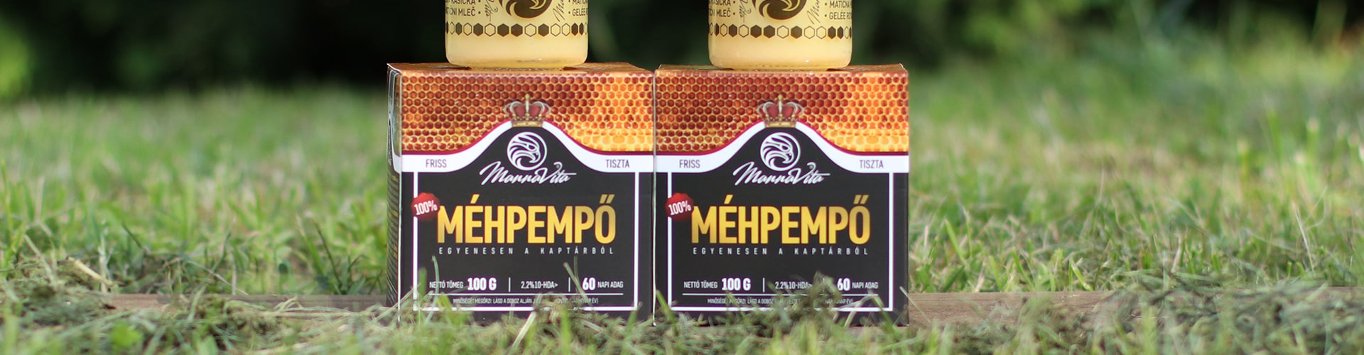 méhpempő a magas vérnyomás kezelésében