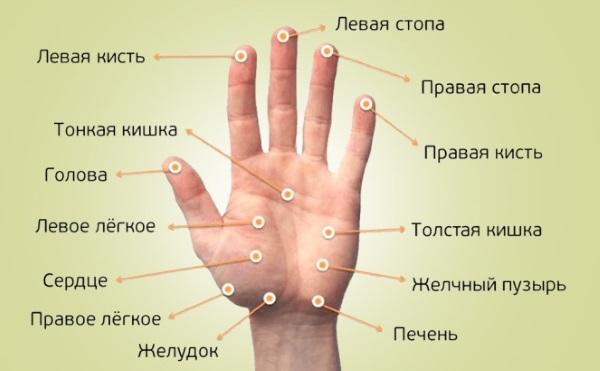 Milyen termékek kezelésére magas vérnyomás