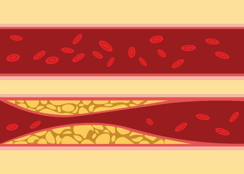 Véradási szabályok és tippek