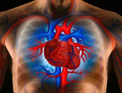 Meglepő dolgok, amiktől felszökhet a vérnyomásunk - HáziPatika