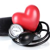 vese magas vérnyomás kezelésére használt gyógynövény