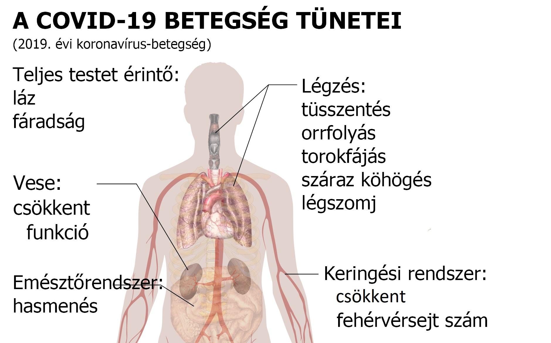 az ASD 2 frakciójának használata magas vérnyomás esetén
