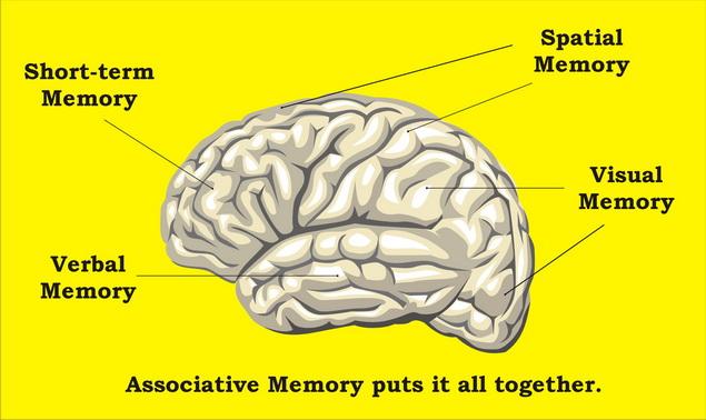 A magas vérnyomás miatt idővel összezsugorodik az agy | Marie Claire