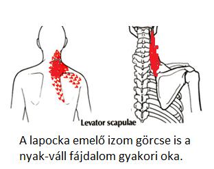 a nyak fáj és magas vérnyomás örökletes magas vérnyomás hogyan kell kezelni