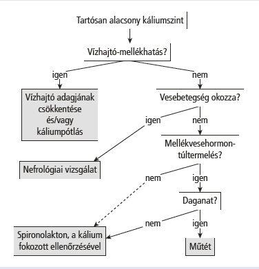 fokozott kortizol hipertónia